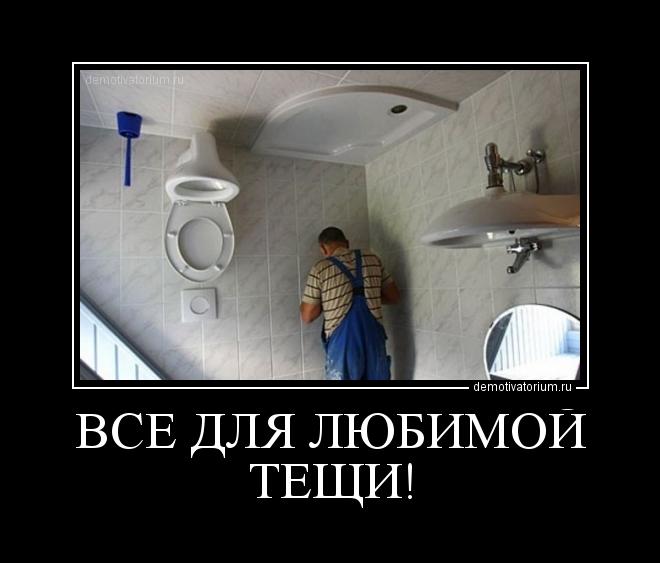 туалет для тещи