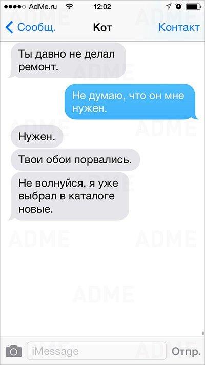 esli-b-kot-sms-6