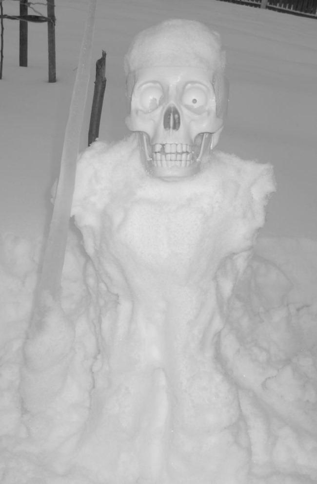 скелет в зимнем лесу