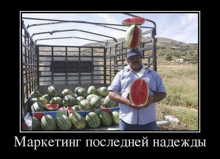 как правильно продавать арбузы