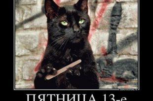Котики на пятницу 13-го