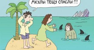 Акулы спасли тещу. Подборка приколов про тещу