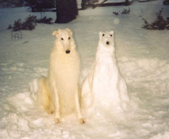 Ну не только коти, бывают еще и снеговечки - собачки