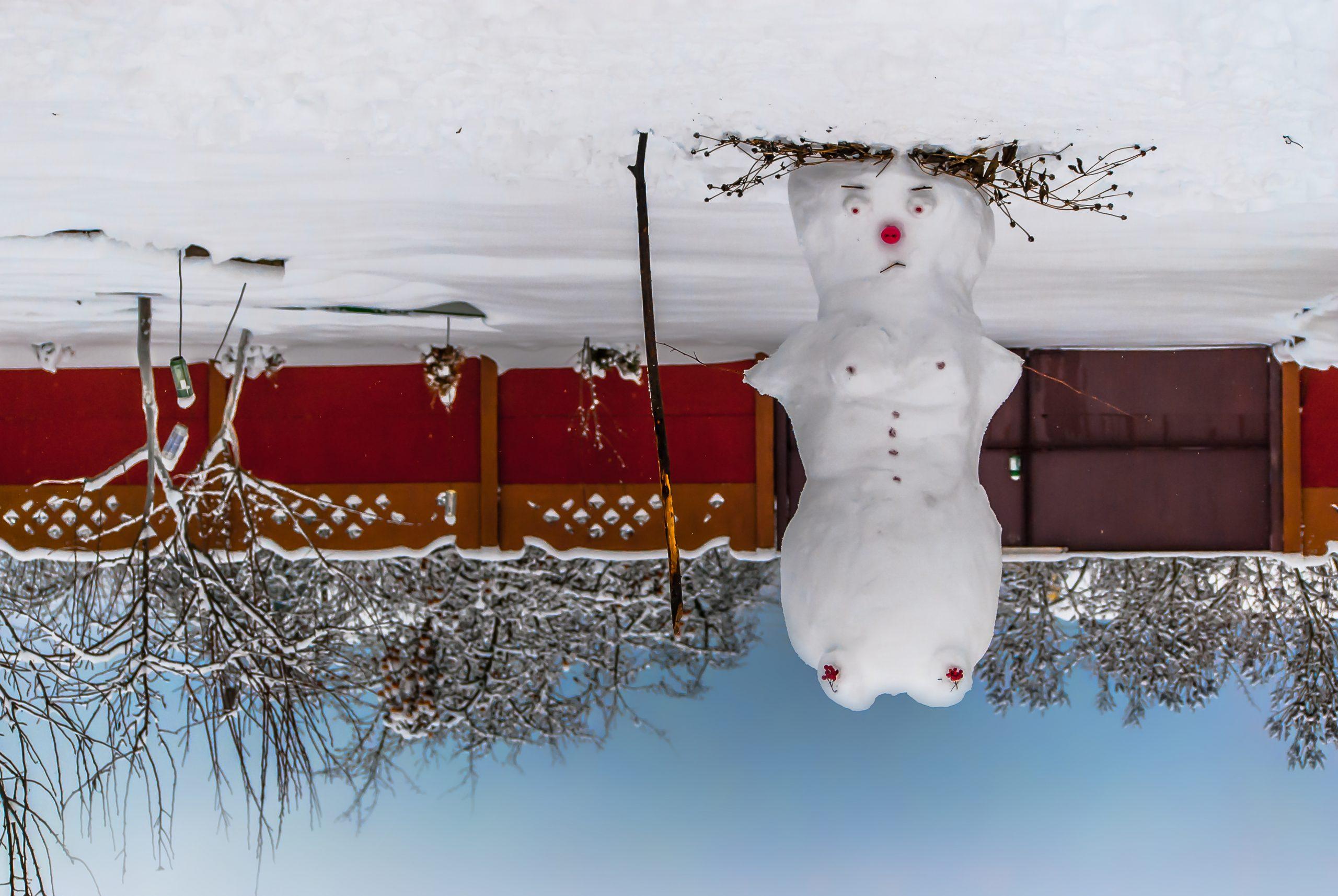 Австралийский снеговик